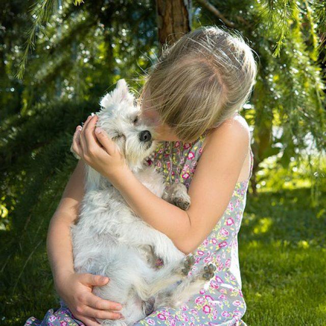 Feiten over het ontwormen van onze honden en katten